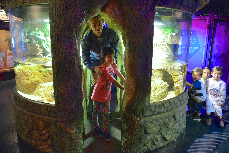 Gardaland SEA LIFE Aquarium_Paradiso delle Tartarughe (4)